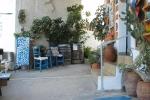 The main shop_24